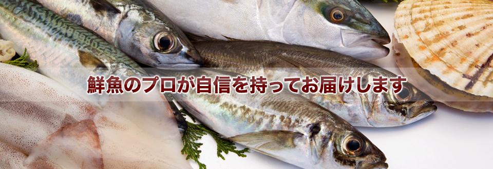 鮮魚のプロが自信を持ってお届けします